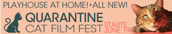 playhouse---top-banner---quarantine-cat-fest.png